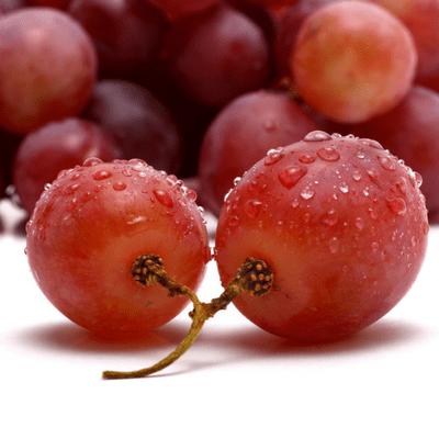 Red Vine Treatment