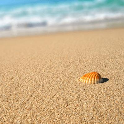 Ocean Treatment